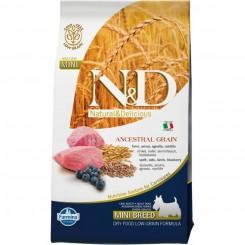 N&D Lam og Blåbær Mini Adult 7 kg.
