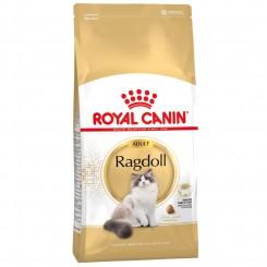 Ragdoll Adult 10 kg.