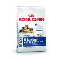 Maxi Starter - Mother & Babydog 15 kg.