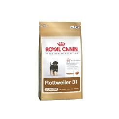 Rottweiler Junior 12 Kg.